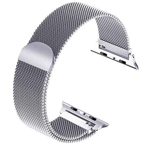 Tervoka Ersatzarmband kompatibel mit Apple Watch Armband 44mm 42mm, Metal Edelstahl Armband mit Magnet kompatibel mit iWatch Series 6/5/4/3/2/1, Silber