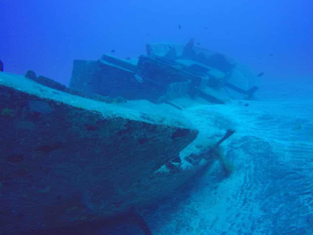 Immersioni Subacquee Immergiti In Un Altro Mondo Avventura E